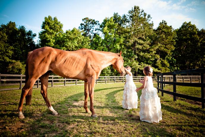 A Pepper Plantation Wedding Charleston